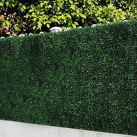 Garden deco green wall outdoor