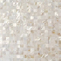Mother pearl natural stone tile for all uses